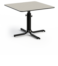 The TITAN Adjustable Table can be individually adjusted to the appropriate height required by a wheel-chair-bound patient.